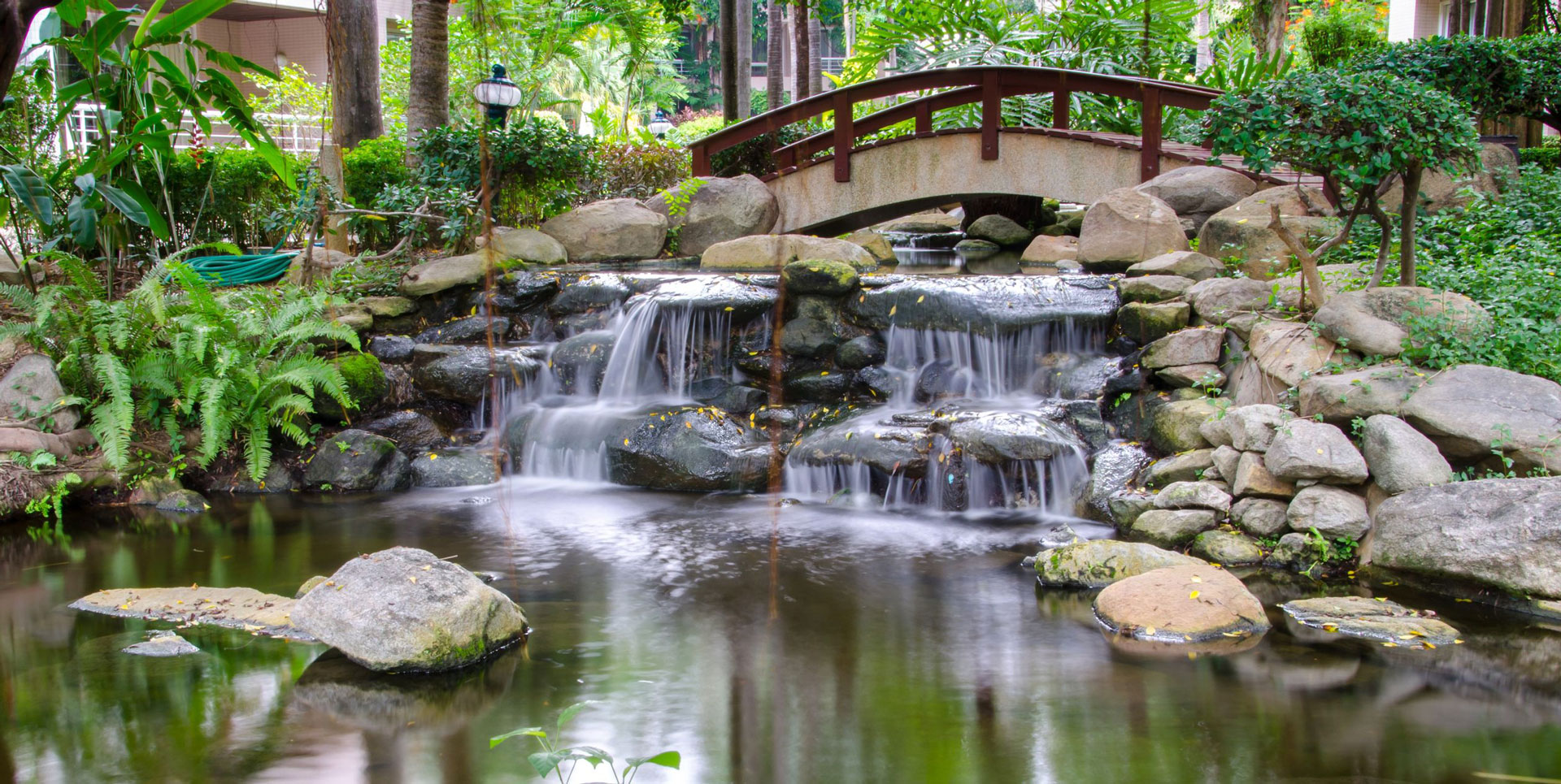Dbt center of the south bay dbt therapy individual for Zen garden waterfall